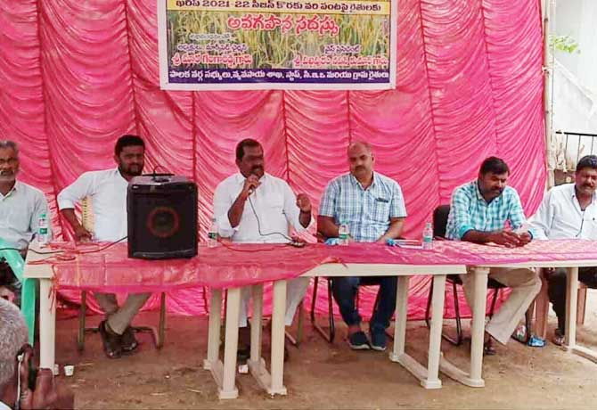 Cultivate Alternative Crops Instead Of Paddy