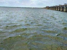 Heavy Floodwater Inflow To Yellampally Project